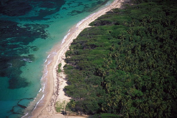 Aerial of a Martinique beach